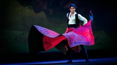 clase magistral danza española sergio bernal international dance school alicante capa